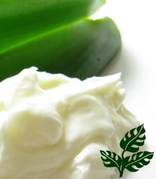 cream-anti-aging-small-jn[1]